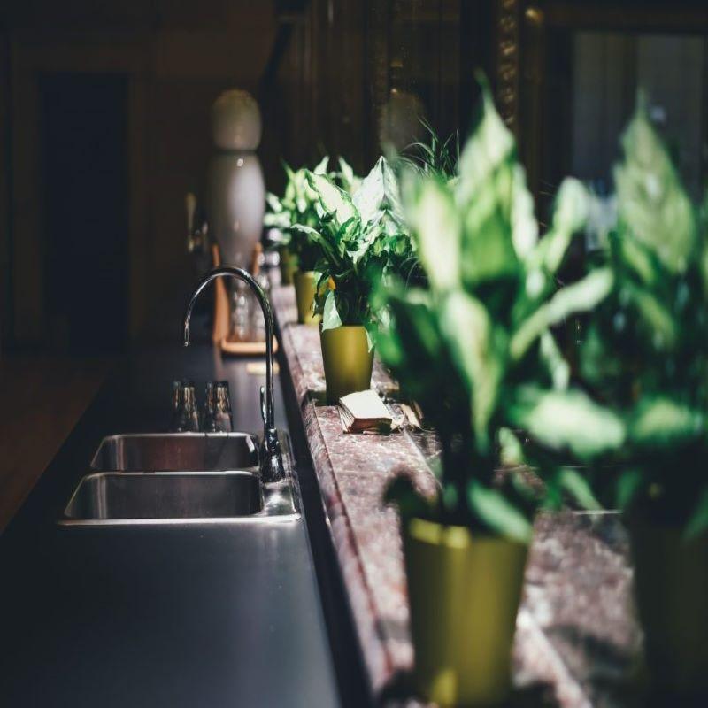 blaturile in bucataria verde